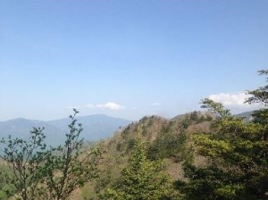 笠取山山頂付近遠景