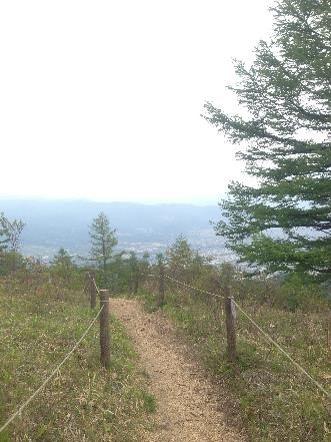 甘利山登山道