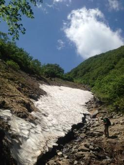 仙丈ヶ岳雪渓