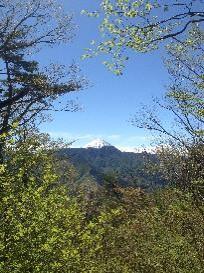 滝戸山から富士山