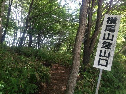 横尾山登山口1
