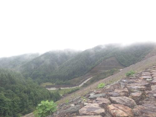 上日川ダム2
