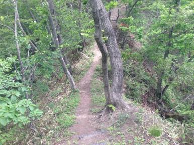笹子登山道