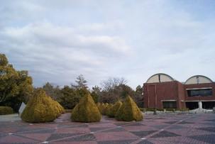 芸術の森公園5